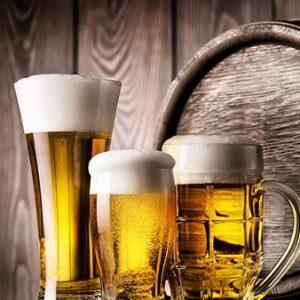 Initiation à La Bière