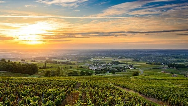 cours oenologie chateauneuf du pape