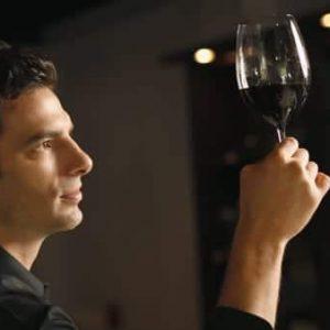 Choisir Le Vin Idéal En Toutes Circonstances (💻 à Distance)